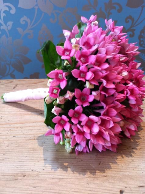 Pink Bouvardia Bouquet