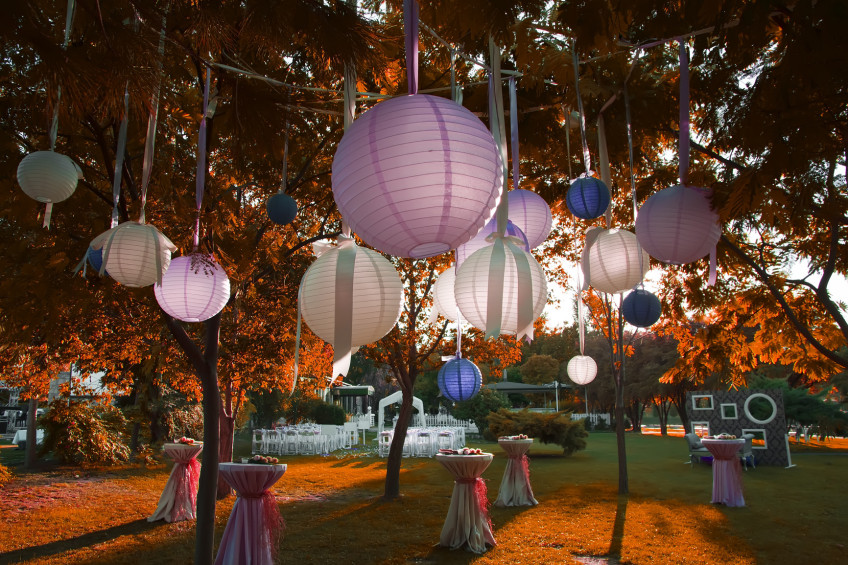 photodune-2976279-wedding-garden-party-m